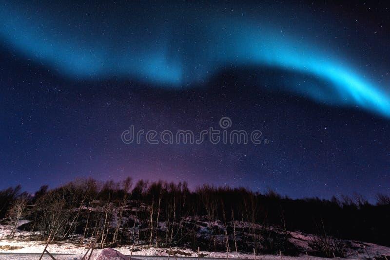 Północnych świateł zorzy borealis w Lofoten wyspach, Norwegia noc zima ulicznych chodzących krajobrazowi ludzie zdjęcia stock