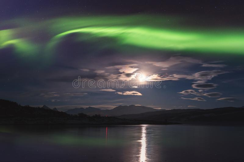 Północnych świateł zorzy borealis w Lofoten wyspach, Norwegia Zadziwiający nocy zimy krajobraz zdjęcie royalty free