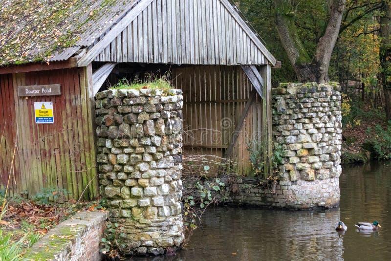 Późny jesienny dzień w Buchan Park Crawley Wielka Brytania obraz stock