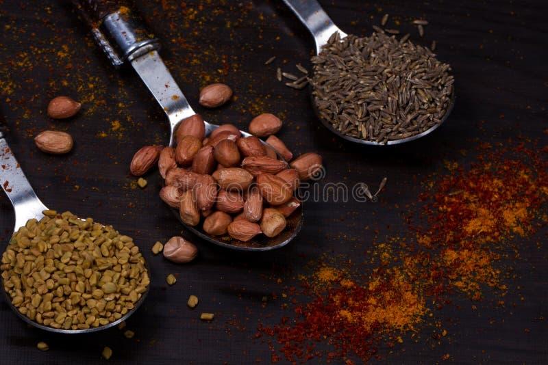 Pó indiano do alimento imagens de stock
