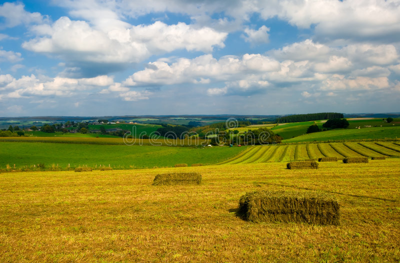 pól uprawnych krajobrazu obraz stock