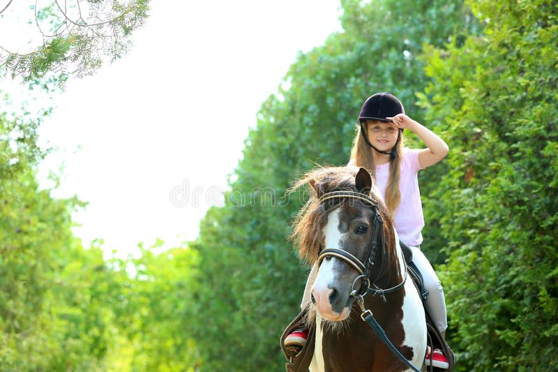 Pônei bonito da equitação da menina no parque fotos de stock royalty free