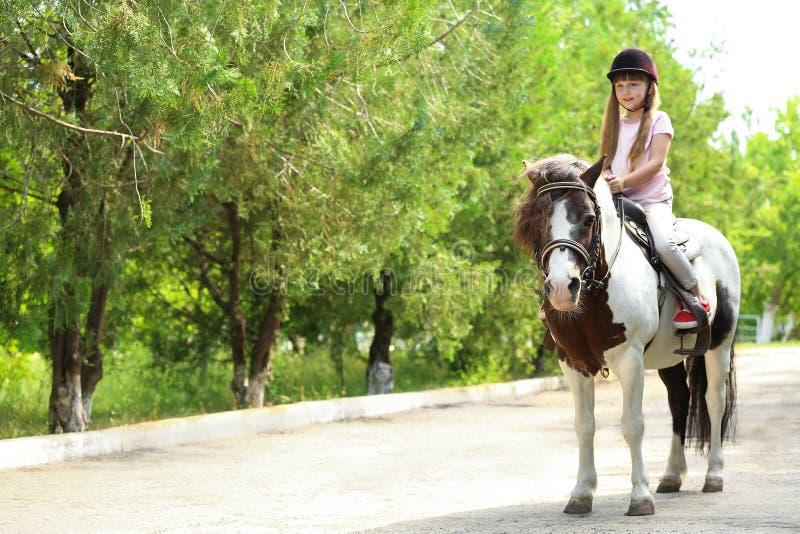 Pônei bonito da equitação da menina no parque imagens de stock