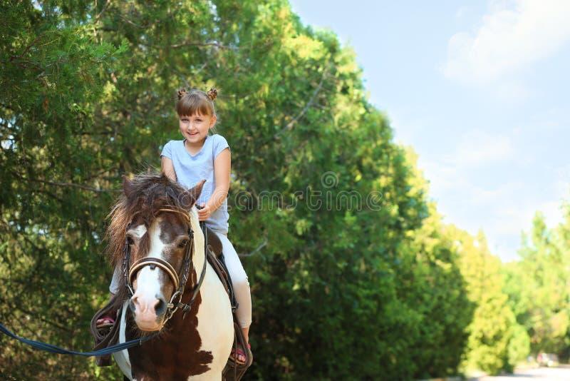 Pônei bonito da equitação da menina no verde fotos de stock royalty free
