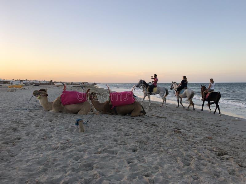 Pôr do sol em Tunesia fotografia de stock royalty free