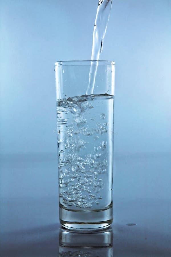 Põr a água em um copo imagens de stock royalty free