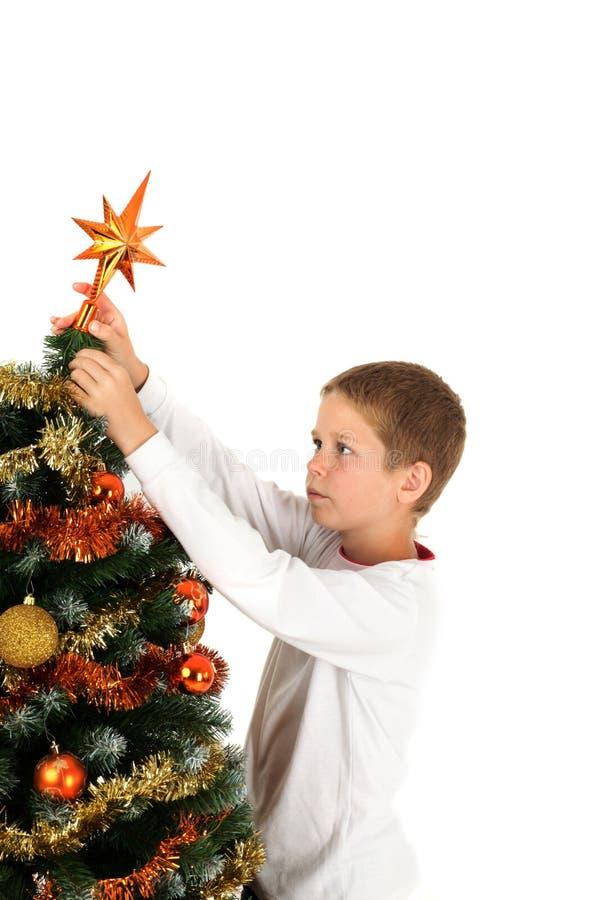 Põr a estrela do Natal imagens de stock royalty free