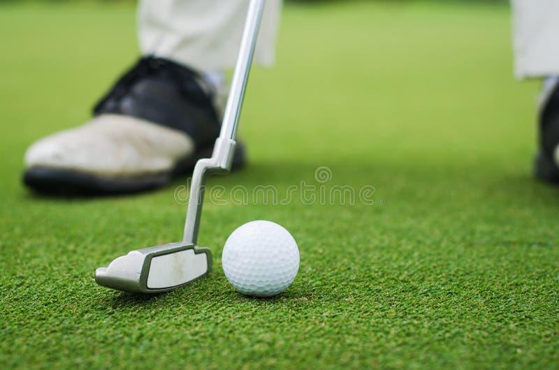 Põr o golfe imagem de stock