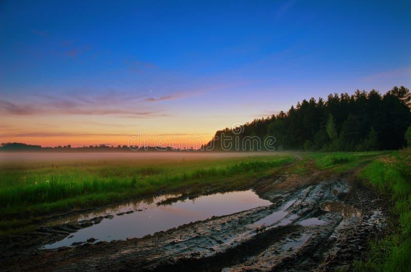 Download Pöl fotografering för bildbyråer. Bild av brigham, skog - 27280117
