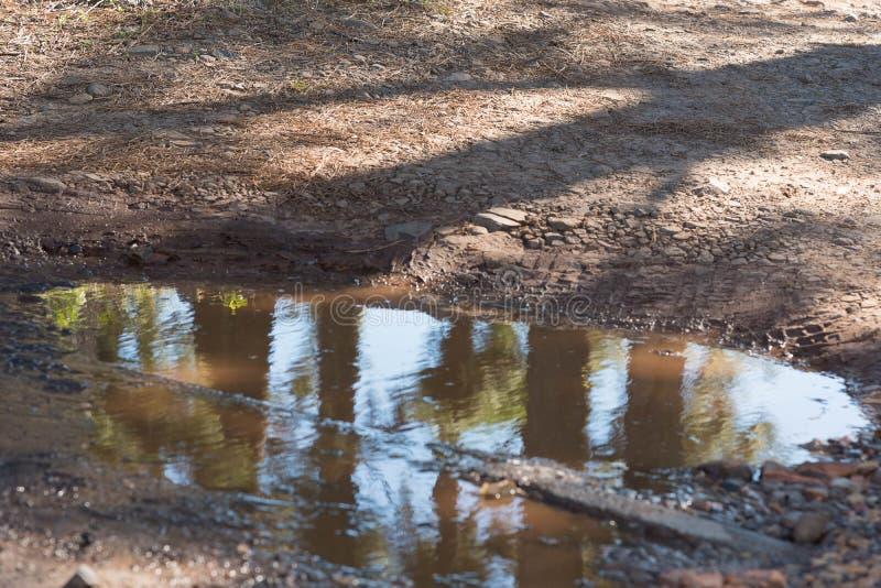Pöl av vatten i parkeringsplatsen royaltyfria foton