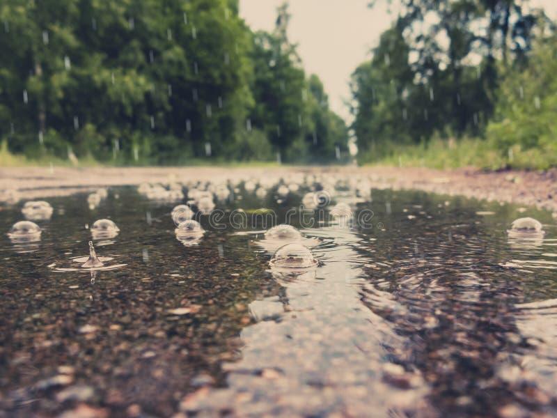 Pöl med bubblor på vägen under regnet royaltyfri bild