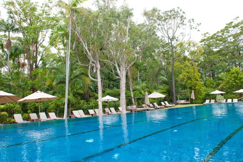 Pöl på kanten av djungeln, Byron på Byron Resort och Spa, Australien royaltyfria foton