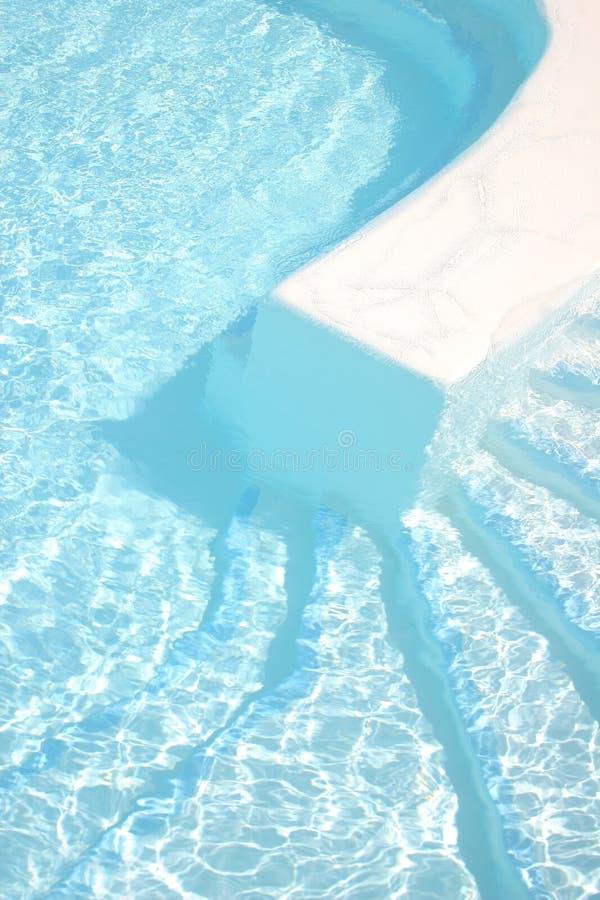 pölen går simning arkivbilder