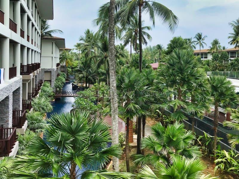 Pölträdgård på hotellet i Thailand royaltyfri foto