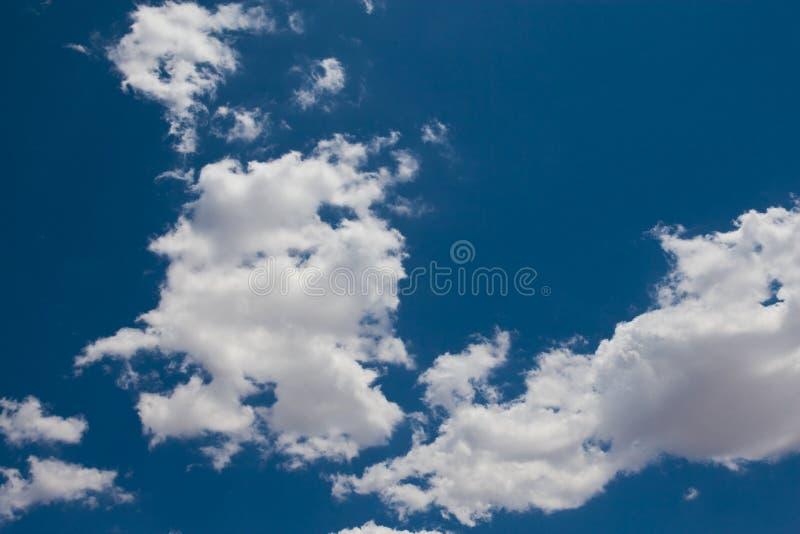 pösig skywhite för blå oklarhet royaltyfri foto