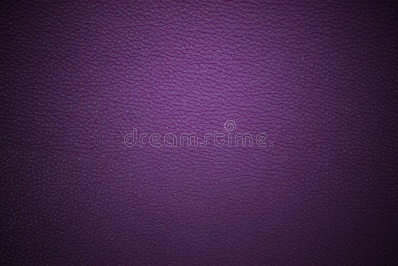 Púrpura fotografía de archivo