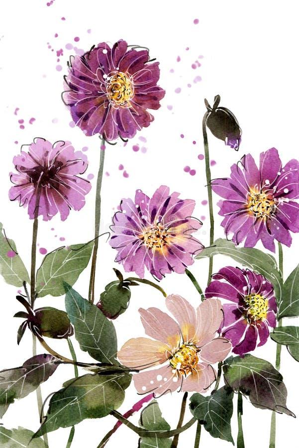 Púrpura de la dalia de la flor de los ramos de la pintura de la acuarela ilustración del vector