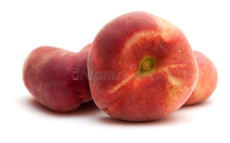 Pączek brzoskwinie obraz stock