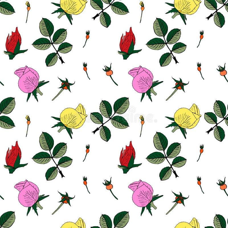 Pączki czerwień, menchie i żółte róże z zielonymi liśćmi, royalty ilustracja