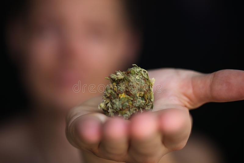 Pączkowy medyczny marihuany marihuany konopie thc fotografia royalty free