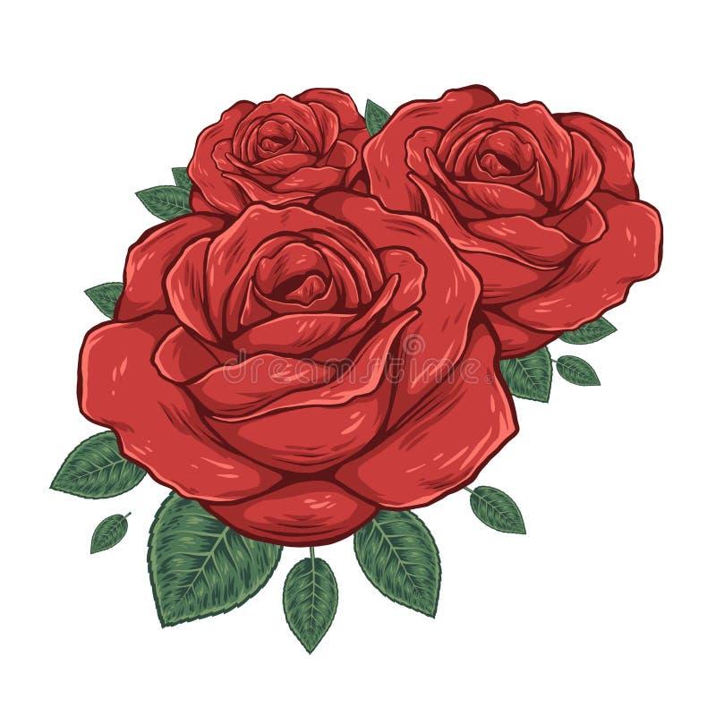 pączkuje róże również zwrócić corel ilustracji wektora ilustracji