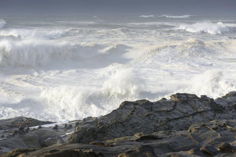 Pęcznienia dekada Rozbija Przeciw falezom brzeg akrów stanu park, gruchy Trzymać na dystans Oregon fotografia royalty free