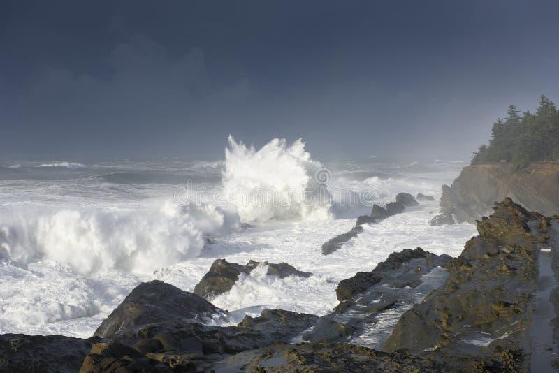Pęcznienia dekada Rozbija Przeciw falezom brzeg akrów stanu park, gruchy Trzymać na dystans Oregon zdjęcie royalty free