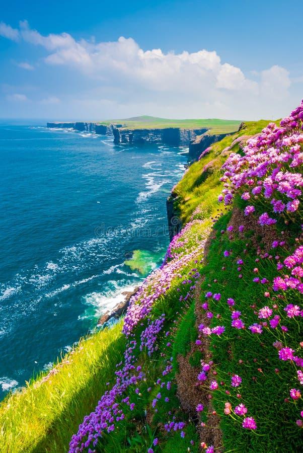 Pętli głowy falezy, Co Atlantycka ocean linia brzegowa blisko Ballyvaughan, Co obraz stock