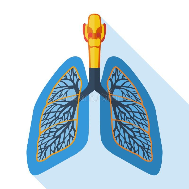 Płaska projekt ikona ludzcy płuca royalty ilustracja