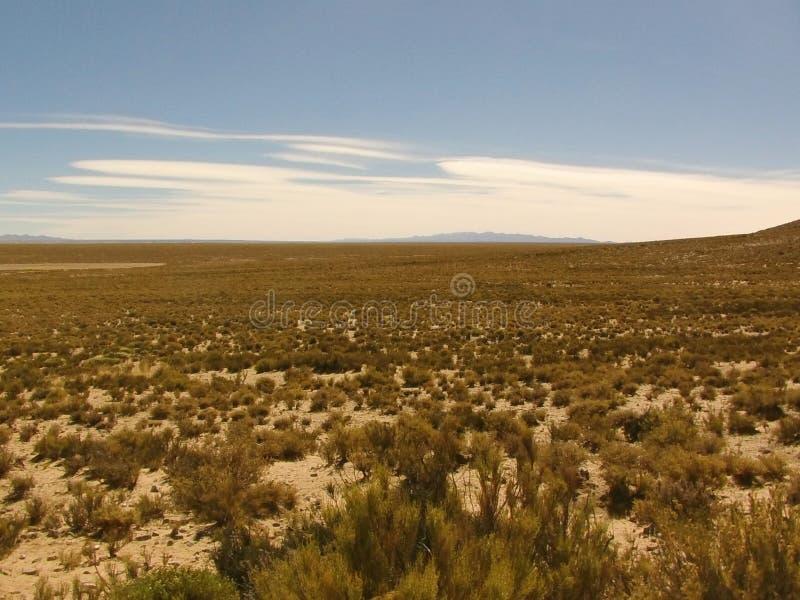 Płaska równina w północy Argentyna zdjęcie stock