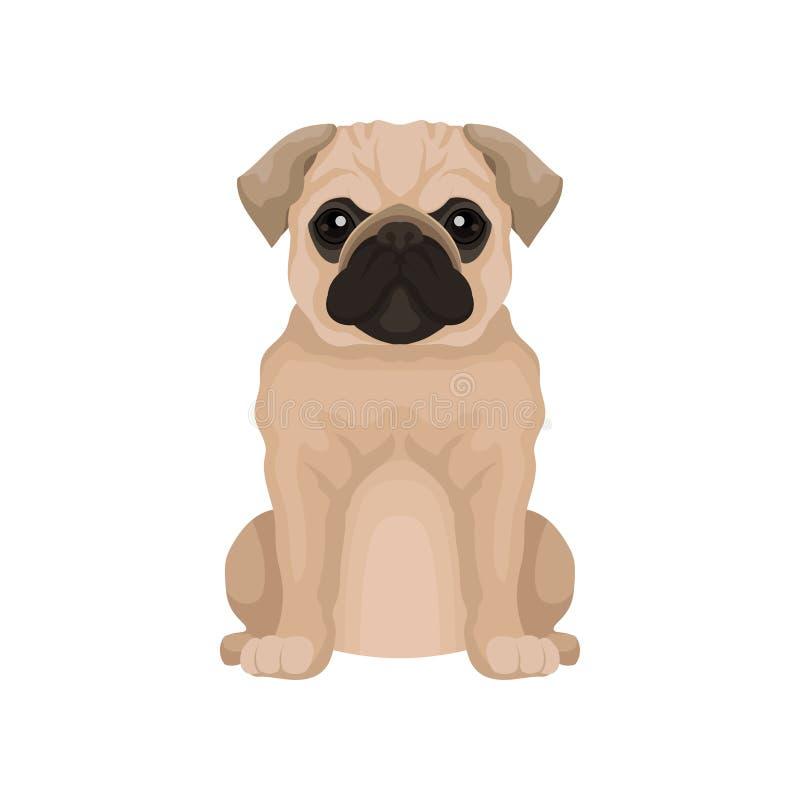Płaska wektorowa ikona śliczny mopsa szczeniak Mały domowy pies z round głową i krótkim kaganem Element dla plakata lub sztandaru ilustracji
