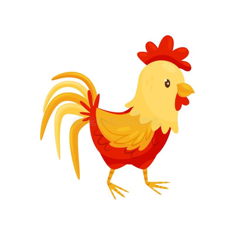 Płaska wektorowa ikona kogut z rudopomarańczowymi piórkami, duży przegrzebek i bujny ogon, ptactwo domowe 7 zwierzęcia kreskówki  royalty ilustracja