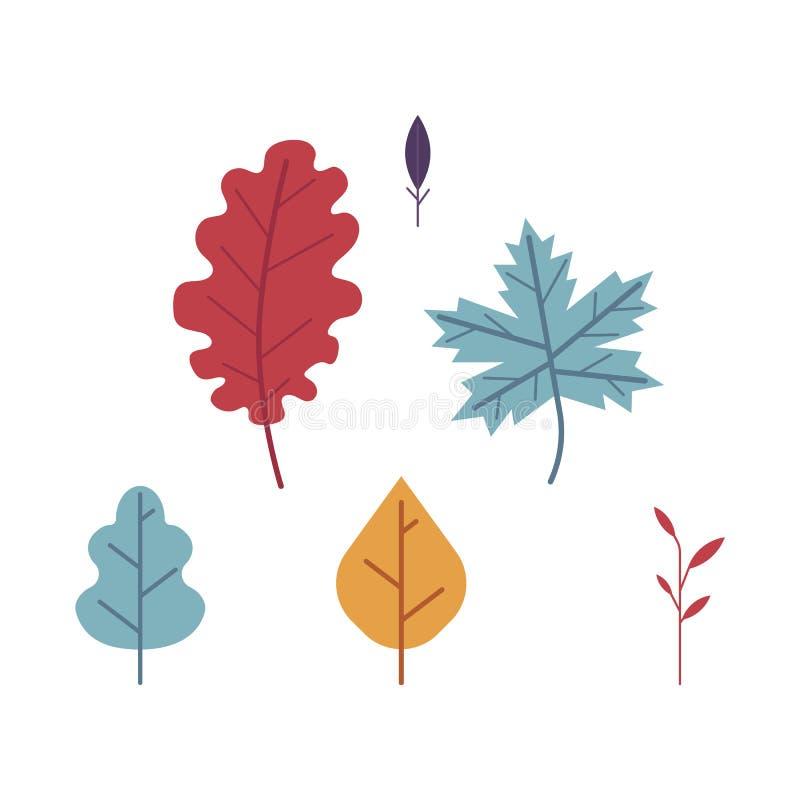 Płaski ustawiający jesień kwieciści symbole i klonowego drzewa liście - dębowi ilustracji