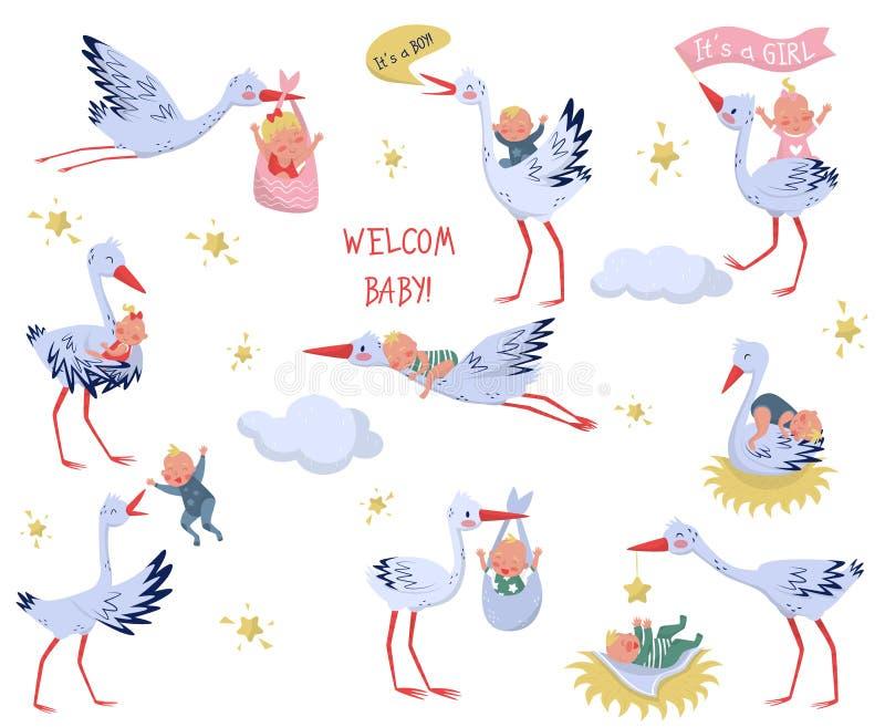 Płaski wektorowy ustawiający biali bociany z dziećmi Uroczy ptaki i nowonarodzeni dzieciaki Elementy dla dziecka kartka z pozdrow royalty ilustracja