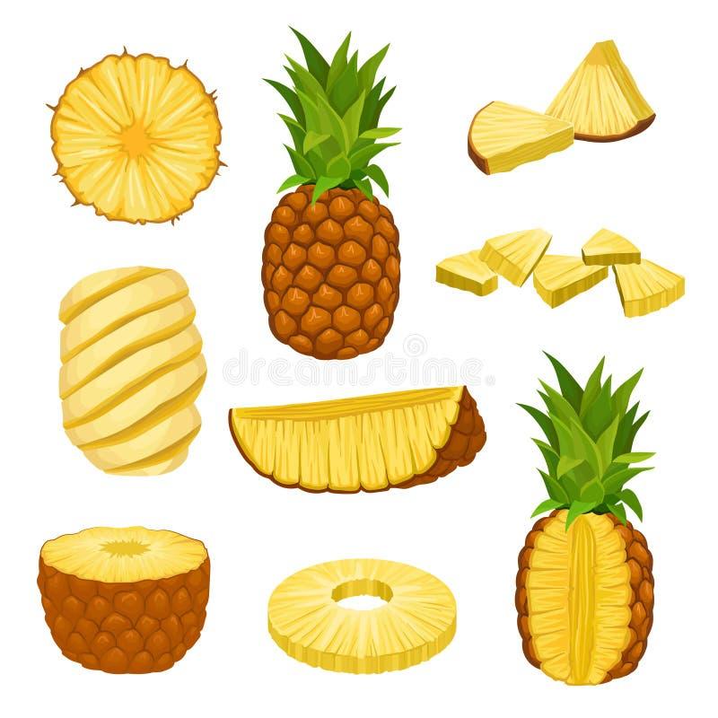 Płaski wektorowy ustawiający cały, połówki i siekający ananasy, Świeża i soczysta tropikalna owoc Elementy dla pakować projekt royalty ilustracja