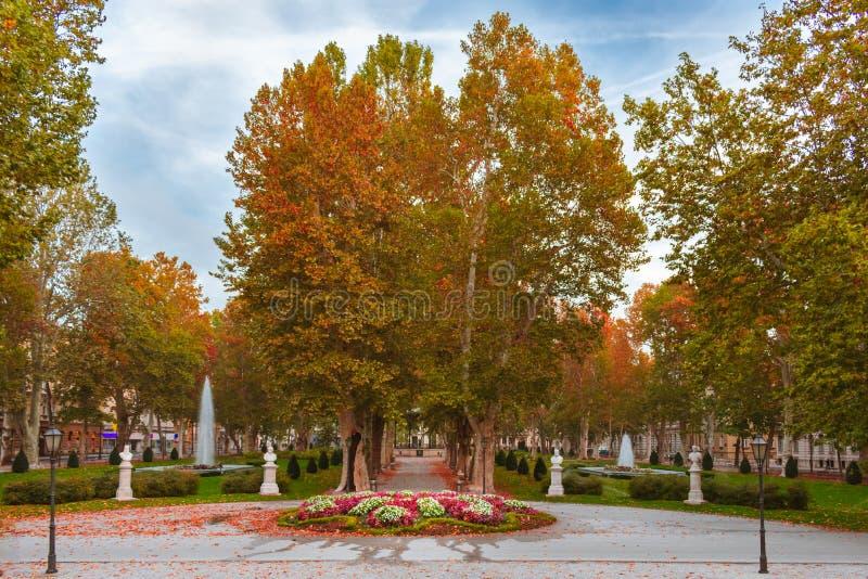 Płaskich drzew aleja i muzyczny pawilon w Zrinjevac parku w Zagreb, Chorwacja, w jesieni obrazy stock