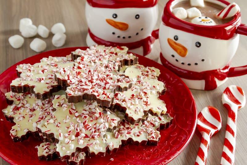 Płatek śniegu kształtujący czekoladowi miętówki barkentyny cukierki zdjęcia royalty free