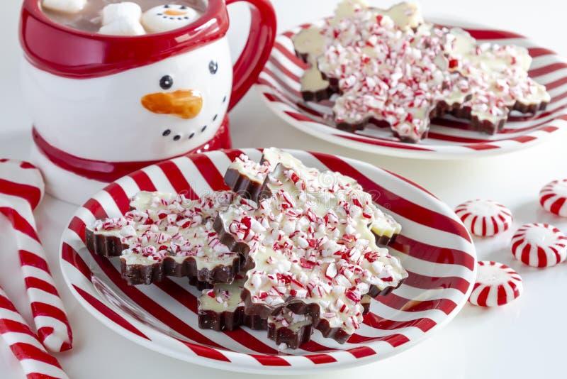 Płatek śniegu kształtujący czekoladowi miętówki barkentyny cukierki zdjęcia stock