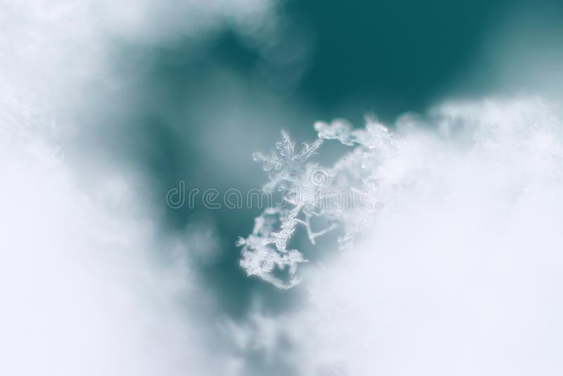 Płatek śniegu w zimie obrazy stock