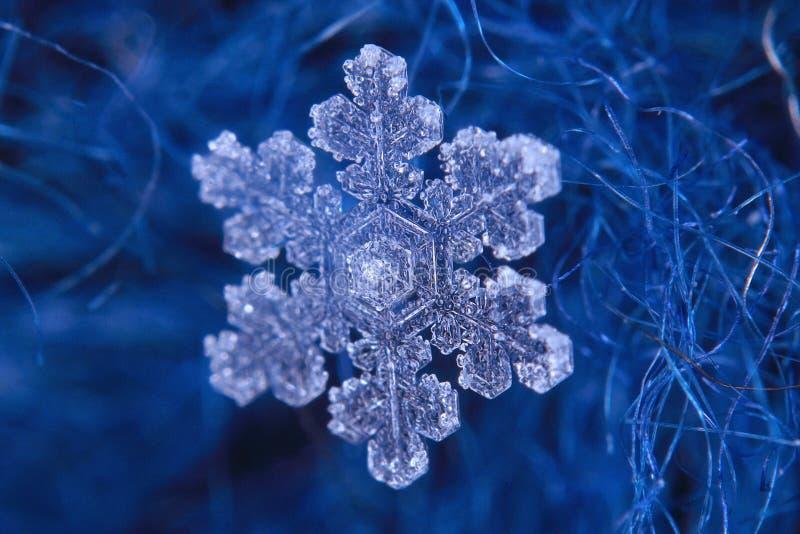 Płatka śniegu krystaliczny naturalny śnieg obraz royalty free