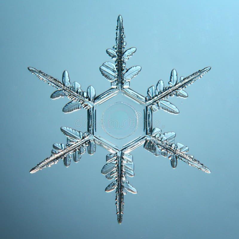 Płatka śniegu kryształ naturalny zdjęcie royalty free