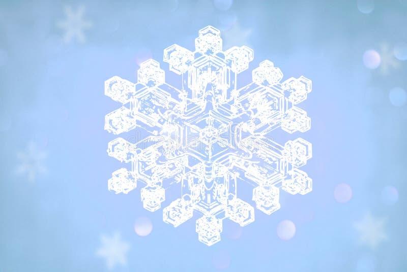 Płatki śniegu krystaliczni ilustracja wektor
