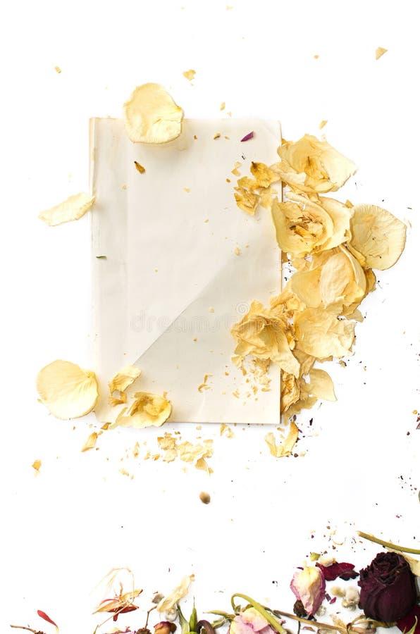 Płatki wysuszone róże i pusty prześcieradło papier zdjęcia royalty free