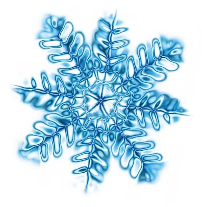płatkiem śniegu royalty ilustracja