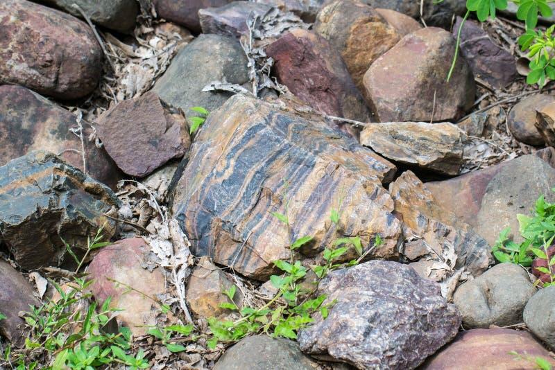 Płatowata Skrzyknąca skała fotografia stock