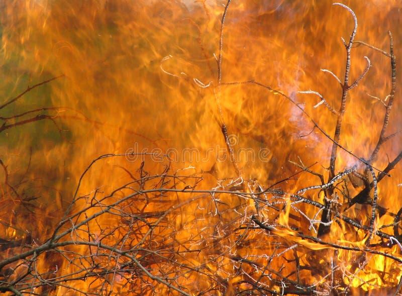 płomień obrazy stock