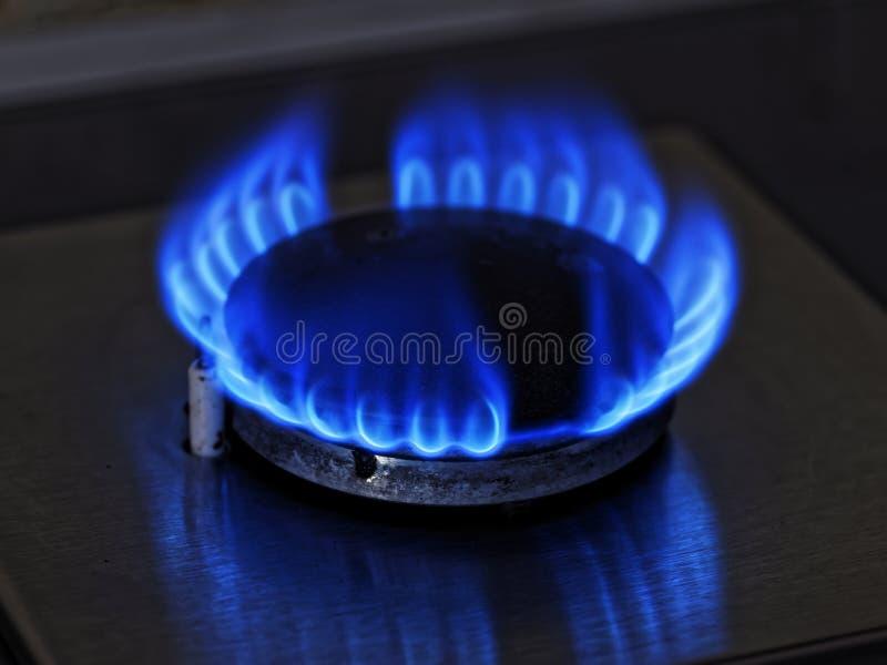 Płomienie błękita gaz Zamyka w górę palenie ogienia pierścionku od kuchennej benzynowej kuchenki fotografia stock