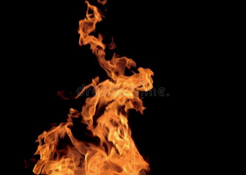 płomienie ognia zdjęcie royalty free