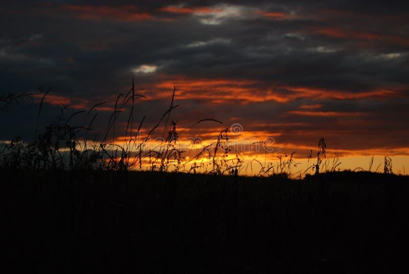 Płonąca noc zdjęcie stock