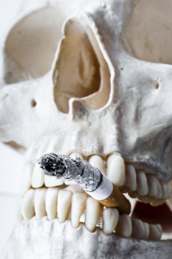 płonąca papierosowa czaszka obrazy stock